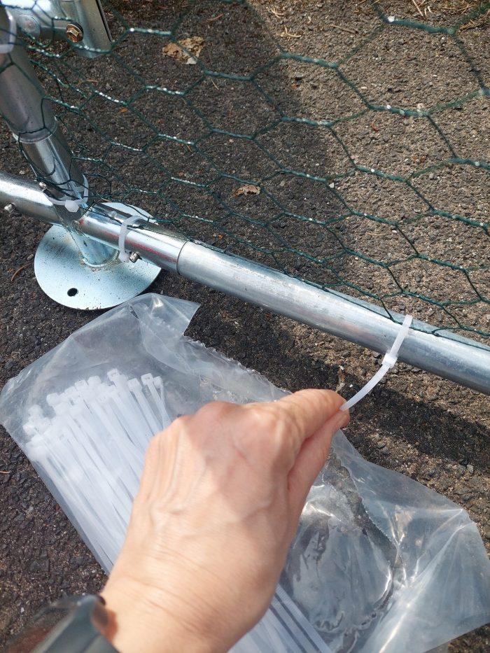 Ein Hand ist zu sehen, die einen Kabelbinder an einem Hühnerauslauf befestigt.